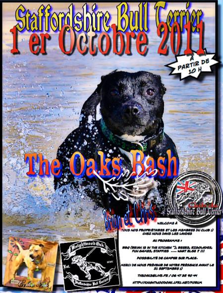 Réunion Staffie - Octobre 2011 - Bulldogge Bash