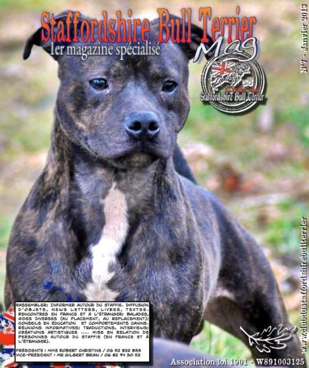 Mag 7 - Janvier 2013 - Spécialisé Staffordshire Bull Terrier