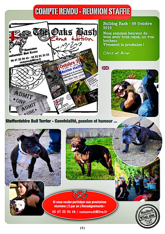 Réunion Staffie - Octobre 2010 - Bulldogge Bash